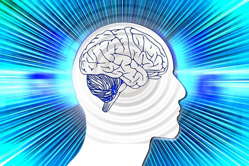 Mentaltraining Hirn