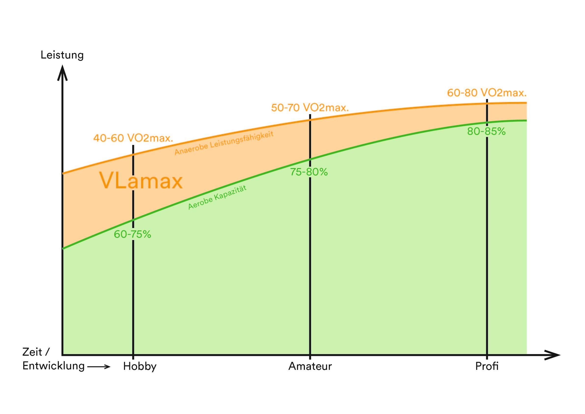 Grafik 1: Unterschiede von Breiten/-Profisportler im Triathlon anhand der VLamax.